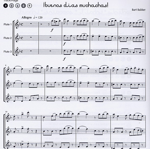 More Fun for Flutes - 6 Playalong Trios